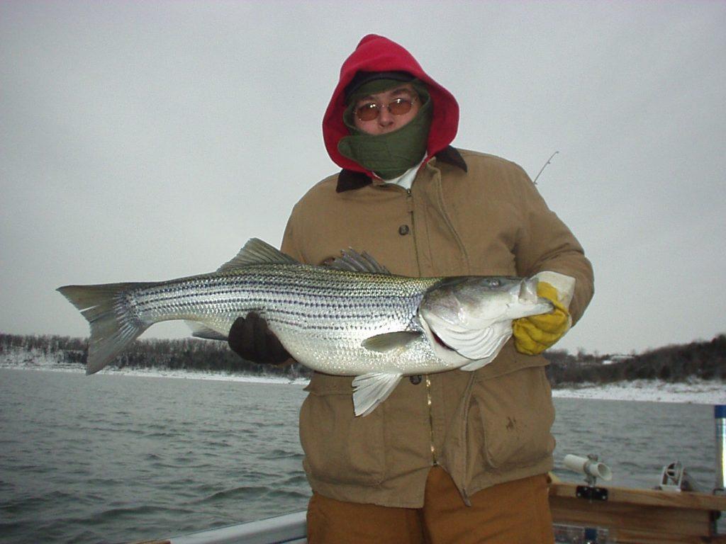 Winter Striper fishing is fantastic.